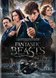 Fantastic Beasts and Where to Find Them on DVD cover