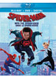 Spider-Man: Into the Spider-Verse on DVD cover