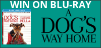 A Dogs Way Home Blu-ray contest