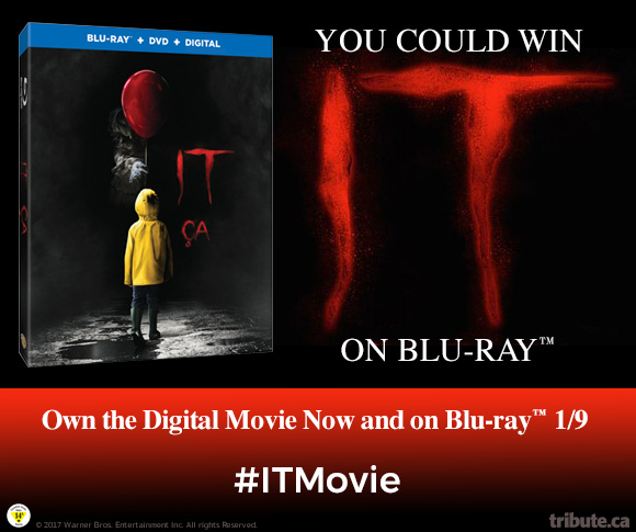Image result for it blu ray