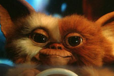 Cinema's Cutest Creatures photo gallery