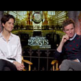 Eddie Redmayne & Katherine Waterston (Fantastic Beasts and Where to Find Them)
