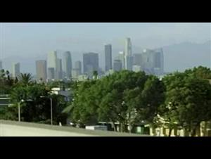 criminal Video Thumbnail