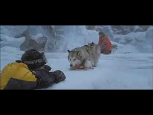 eight-below Video Thumbnail