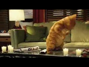 garfield-a-tail-of-two-kitties Video Thumbnail