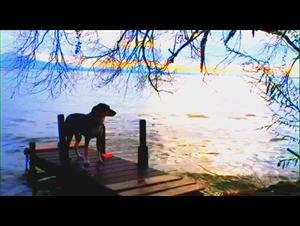 goodbye-to-language-3d Video Thumbnail