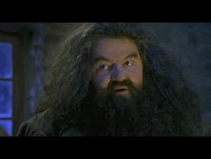 harry-potter-and-the-philosophers-stone Video Thumbnail