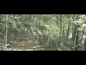 i-declare-war Video Thumbnail