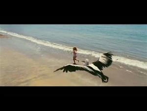 nims-island Video Thumbnail