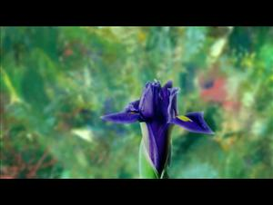 painting-the-modern-garden-monet-to-matisse Video Thumbnail