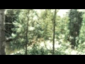 secret-window Video Thumbnail