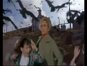 the-birds Video Thumbnail