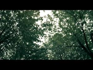 the-moth-diaries Video Thumbnail