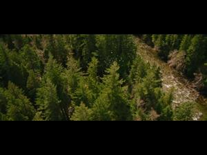 the-twilight-saga-breaking-dawn-part-2 Video Thumbnail