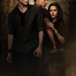 Girl jailed for piracy at New Moon screening
