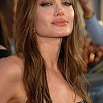 Angelina Jolie 'had affair with Jagger'