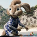 Hop a hit at box office