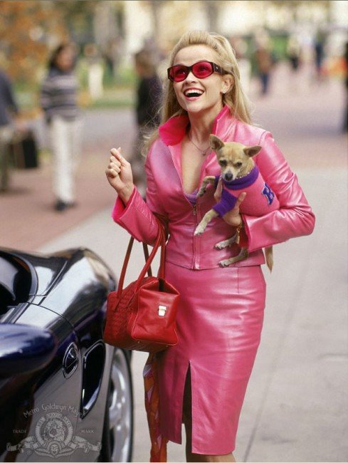 Beautiful, popular Elle Woods (Reese Witherspoon) has everything going for her. When she's asked to dinner by longtime boyfriend Warner (Matthew Davis), she assumes he's going to propose, but instead, he dumps her. Warner comes from a wealthy, educated family who has urged him to go to Harvard and he tells Elle she's not smart […]