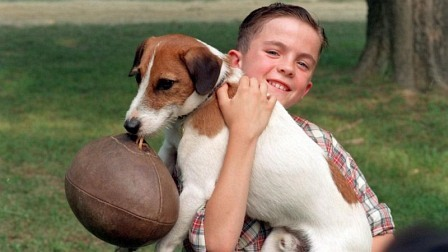 A lonely nine-year-old boy (Frankie Muniz) is given a Jack Russell Terrier for his birthday and through the dog, finally gains acceptance in his small town.