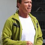 Arnold Schwarzenegger in talks for Toxic Avenger remake