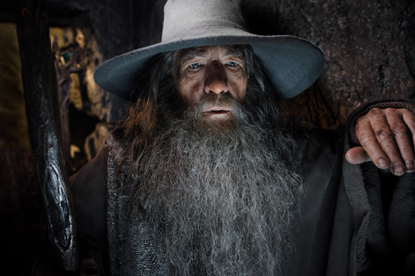 Gandalf leaves Bilbo with Thorin and the dwarves to go off with Radagast to keep an eye on Middle-earth. He enters Dol Guldur, where he discovers the true identity of the Necromancer.
