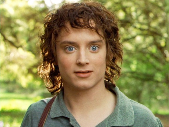 Elijah Wood has cemented his place in pop culture history with his portrayal as ring bearer Frodo Baggins. The doe-eyed and brave Hobbit traveled from the comforts of the Shire to the terrors of Mount Doom all in the name of saving Middle-earth from the tyranny of Sauron and the Ring.