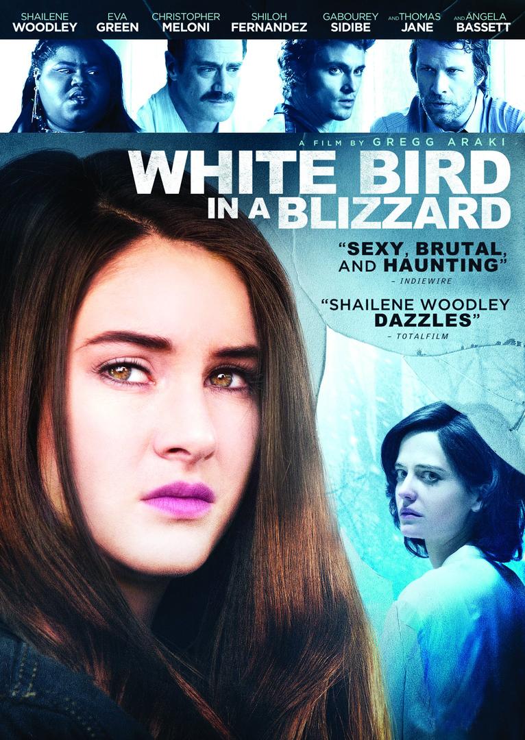white_bird_in_a_blizzard