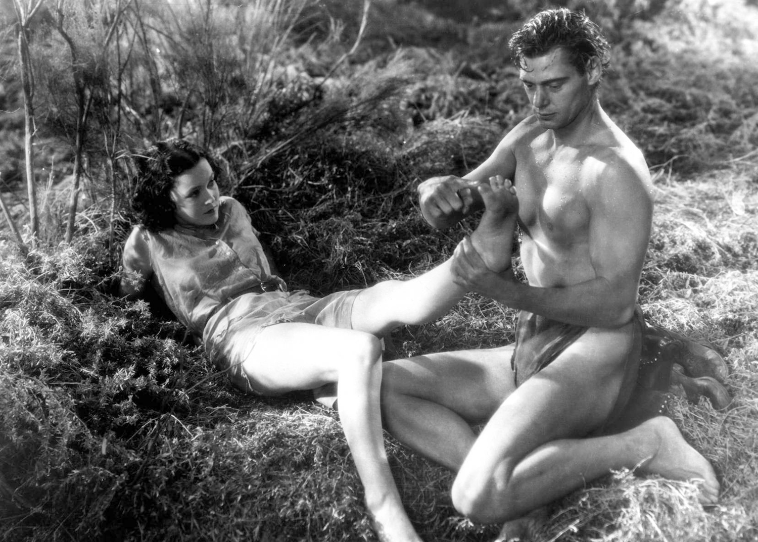 Tarzan and jane haveimg sex apologise