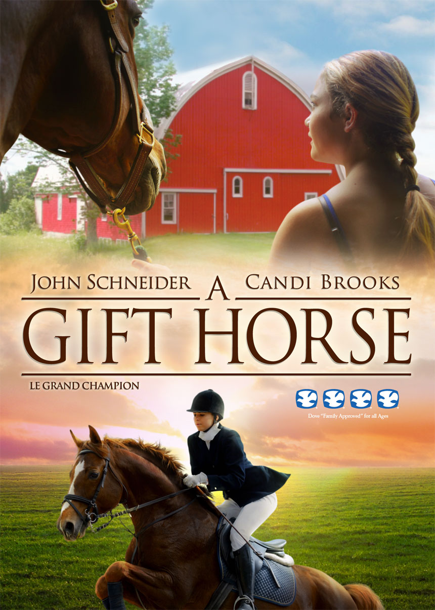 A gift horse heartwarming tale on dvd celebrity gossip and movie news a gift horse negle Choice Image
