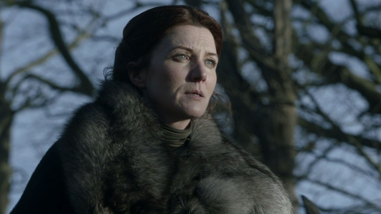 Wife of Ned Stark and mother to many other main characters, Catelyn was murdered in the third season's The Red Wedding episode. Being mother of the King of the North is enough to get you murdered.