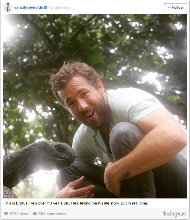 Ryan Reynolds with tortoise