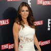 Elizabeth Hurley's vodka-filled fridge