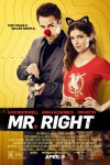 Mr. Right is entertaining in all the right ways - movie review