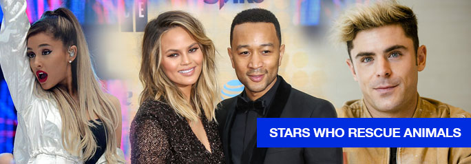 Certain celebrities behave in ways average people wouldn't dare. Think: Justin Bieber urinating in a restaurant mop bucket or Kanye West surprising his wife Kim Kardashian with a private orchestra performance in their living room and a bench full of pink flowers for Mother's Day (which, naturally, she flaunted across every social media platform possible). […]