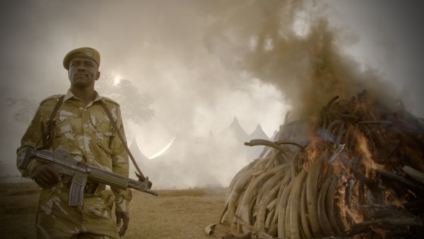 Netflix's The Ivory Game - Q&A with directors