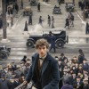 J.K. Rowling squashes Fantastic Beasts sequel rumor