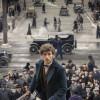 J.K. Rowling squashes Fantastic Beasts sequel rumor