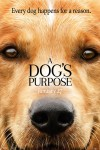 New movies in theaters - A Dog's Purpose, Gold and more