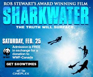 Rob Stewart's award-winning Sharkwater