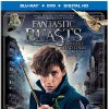 Fantastic Beasts is spellbinding fun - Blu-ray/DVD review