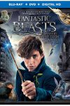 New on DVD - Fantastic Beasts, Patriots Day and more