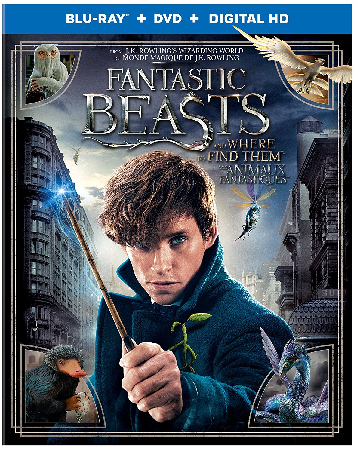 Fantastic Beasts new on DVD