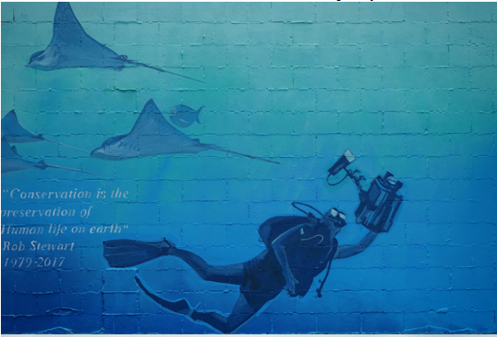 Freeman White mural in New Zealand to honor Rob Stewart's memory