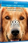 A Dog's Purpose is a heartwarming story - Blu-ray review