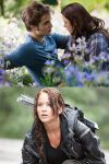 New Twilight and Hunger Games sequels a possibility
