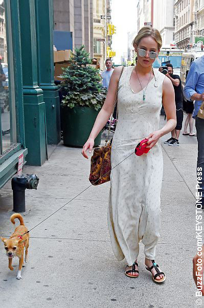 Jennifer Lawrence walking her dog in NYC