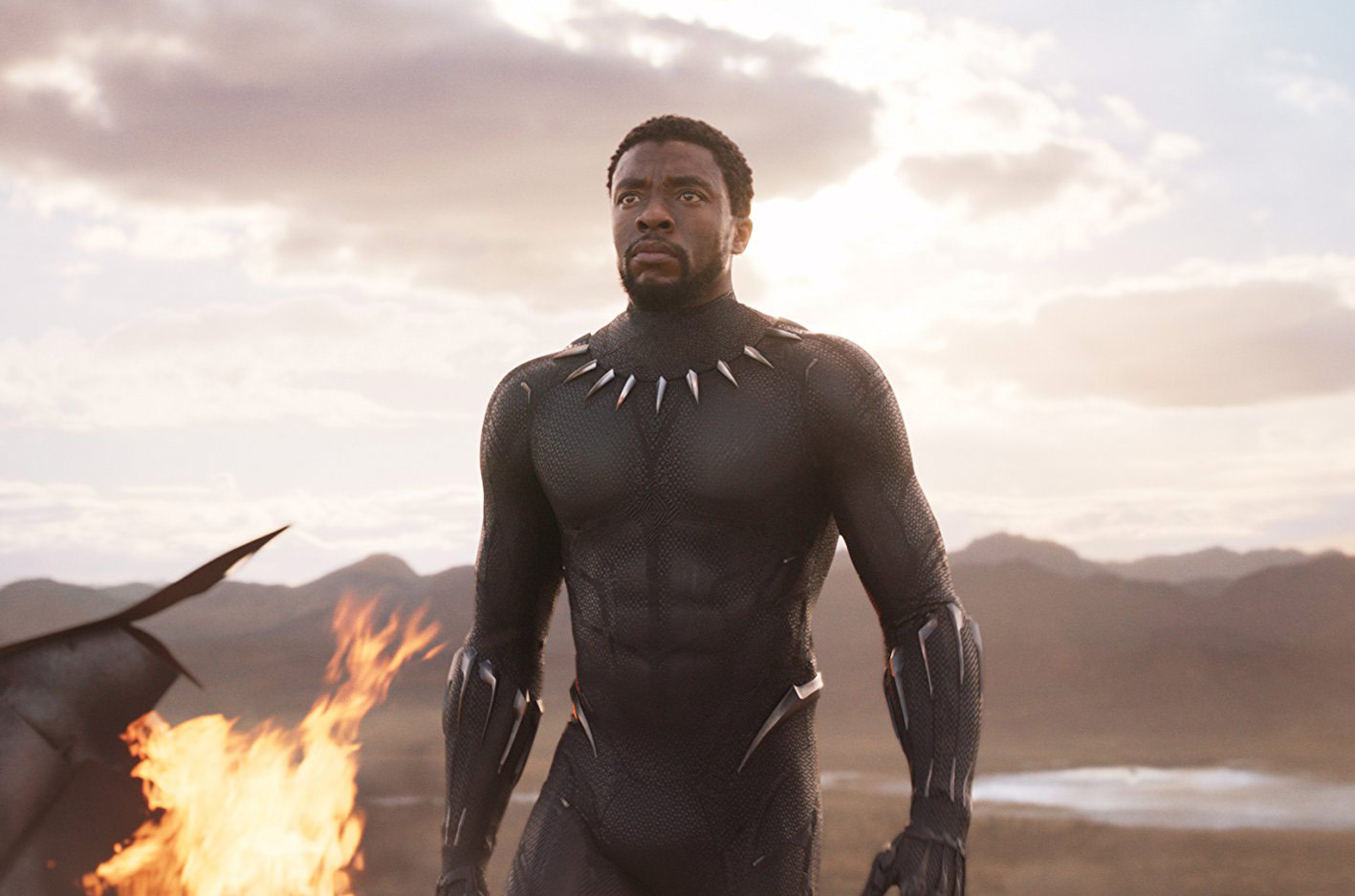 Chadwick Boseman in and as Black Panther
