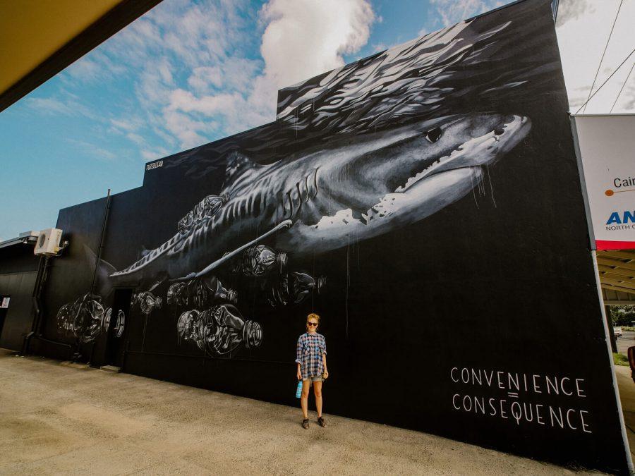 Rob Stewart Mural in Australia by artist Claire Matthews