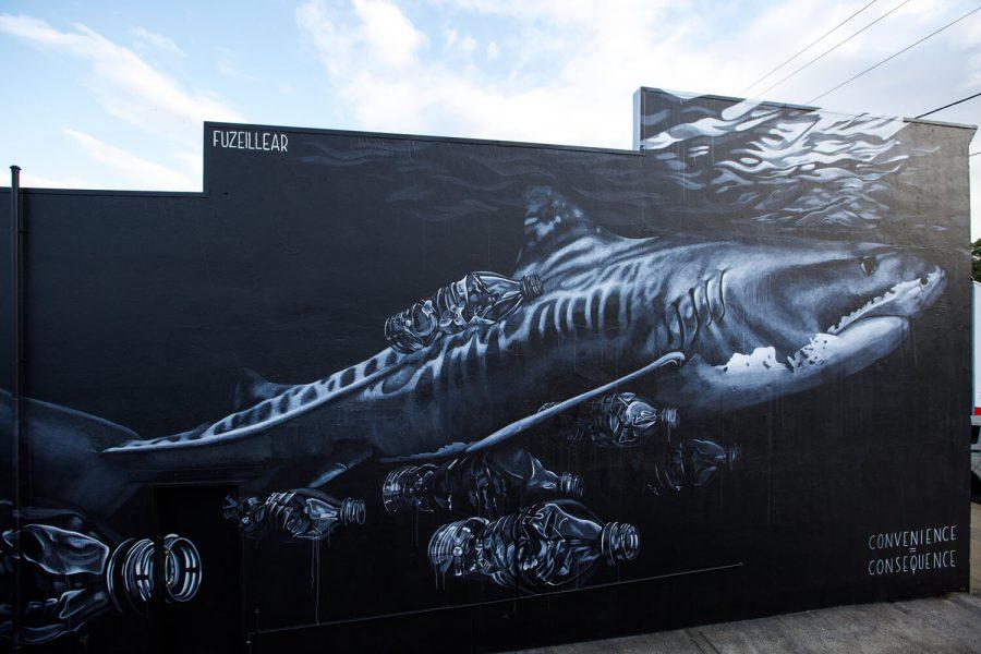 Rob Stewart Mural in Australia