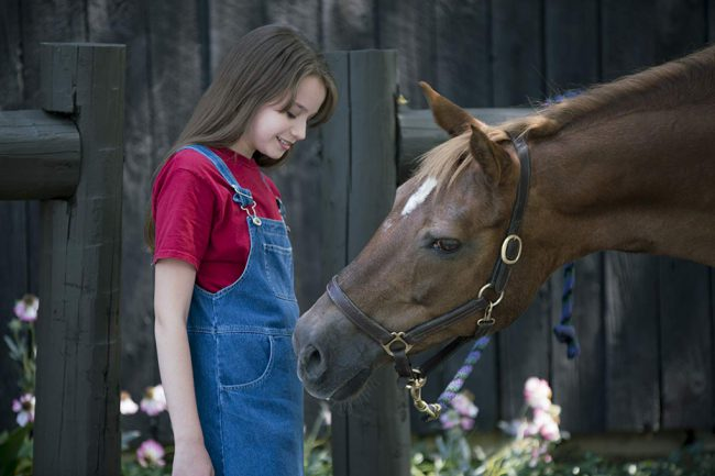 Skye (Morgan Neundorf) lives at Rescue Ranch, where her mother and veterinarian grandfather rescue all kinds of animals, including horses. They also run a boarder barn to pay the expenses. Skye, who is an excellent rider, struggles with her reading. However, her friends Olivia, Trish and Ethan help her, not only with her reading, but […]